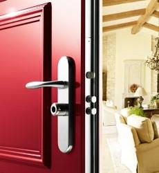Puerta acorazada para chalet Forstyl de Fichet: Diseño y seguridad